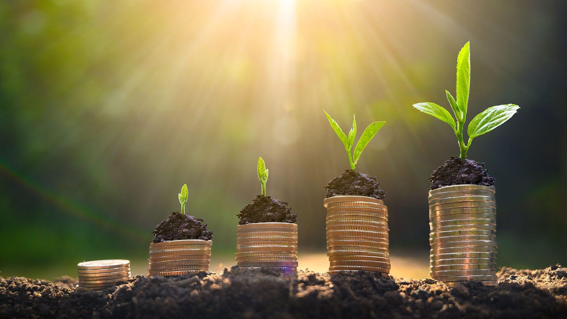 Hur ska man investera sina pengar?